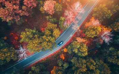 9 Tips for Fall Car Care Month